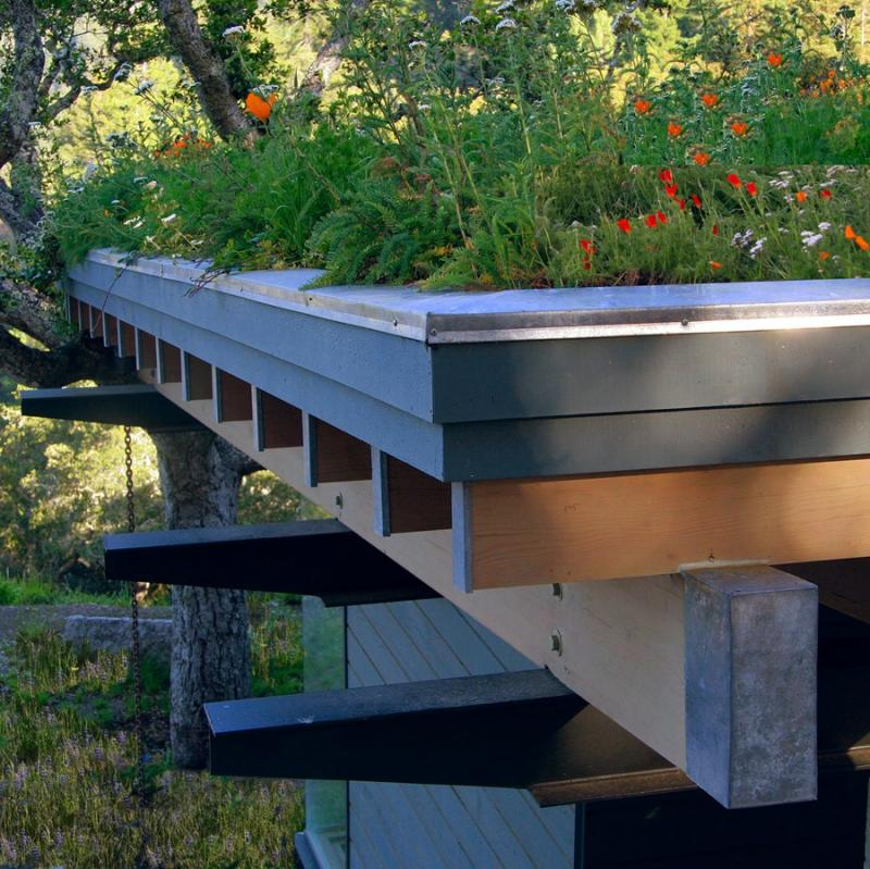 Green Roof Idea