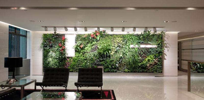 Vertical Plants In The Office Increase Air Quality